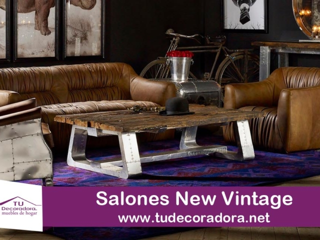 Salones decoradora sofas
